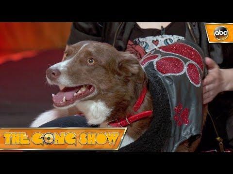 Sweet Sundance – The Gong Show