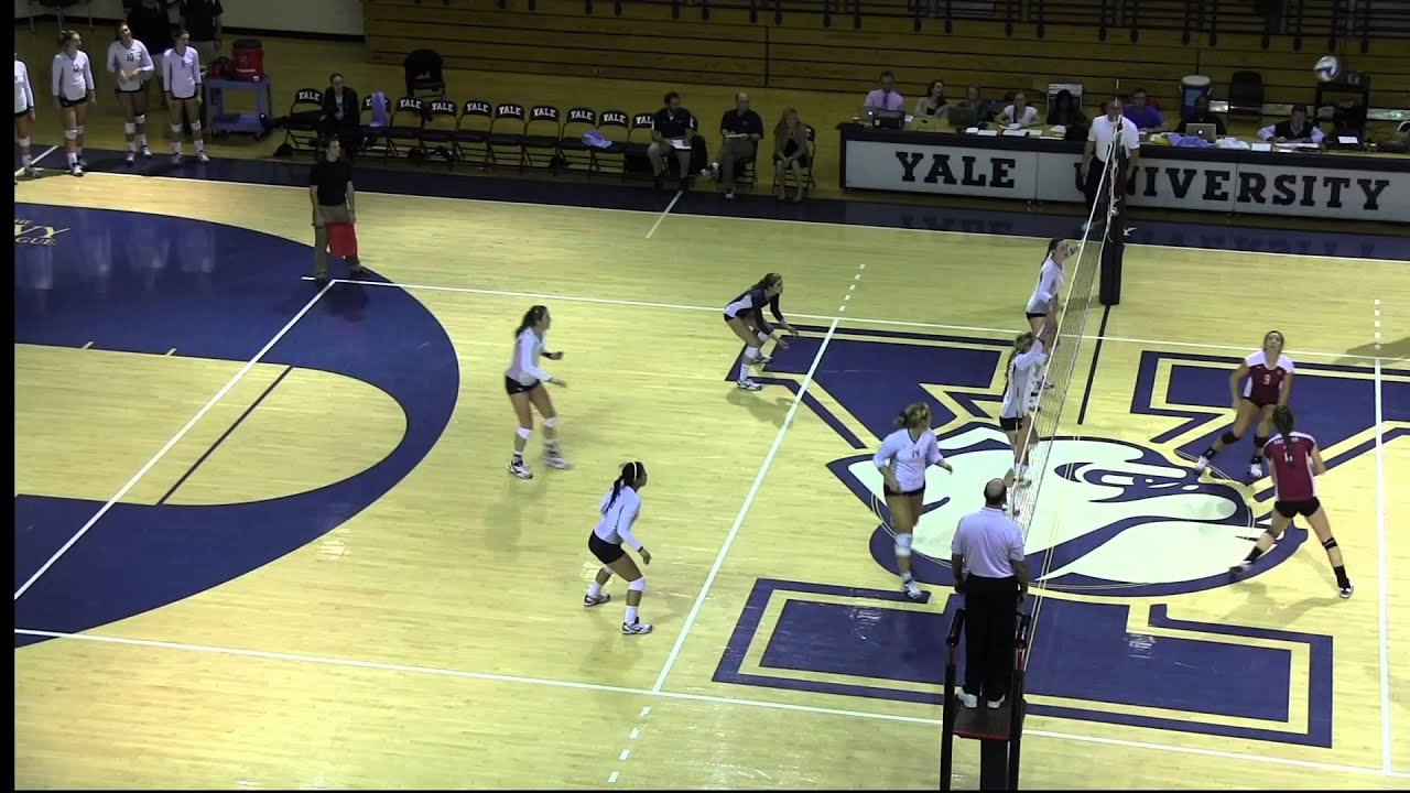 6 2 Volleyball Formation Diagram Porter Five Forces Breaking Down The Bulldogs 39s Offense