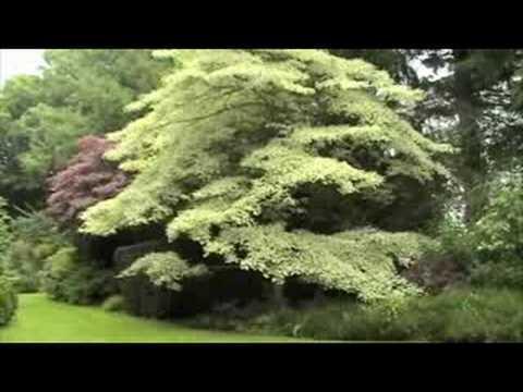 Le jardin de Prat Ar Vilin à Plouha