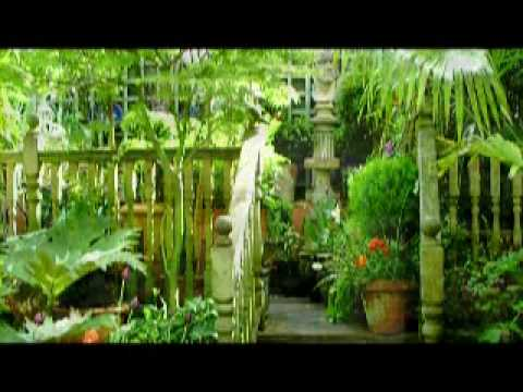 National Garden Scheme (NGS) - The garden at 28 Kensington Road.MPG