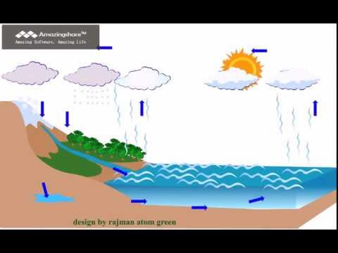animasi siklus hidrologisiklus air  YouTube