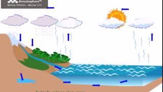 Video animasi siklus hidrologi/siklus air download MP3, 3GP, MP4, WEBM, AVI, FLV Mei 2018