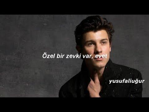 Shawn Mendes-Particular Taste (Türkçe Çeviri) |Turkısh Translation
