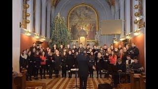 Študentski zbor Sv  Stanislava in Mladinski pevski zbor Amen cerkev Domžale, 21  1  2018