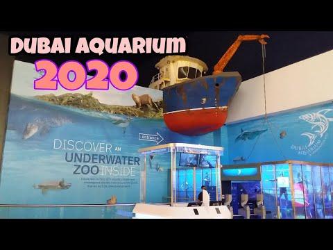 Dubai UnderWater Aquarium Zoo 2020…NHEST TV