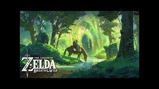 1 Hour of Emotional & Relaxing Music - Breath of the Wild