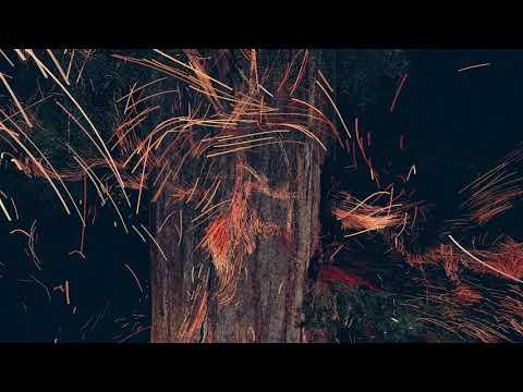 Treehugger Trailer