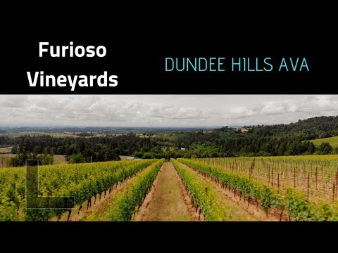 Wine Tasting In The DUNDEE HILLS, Oregon - Furioso Vineyards (Video)