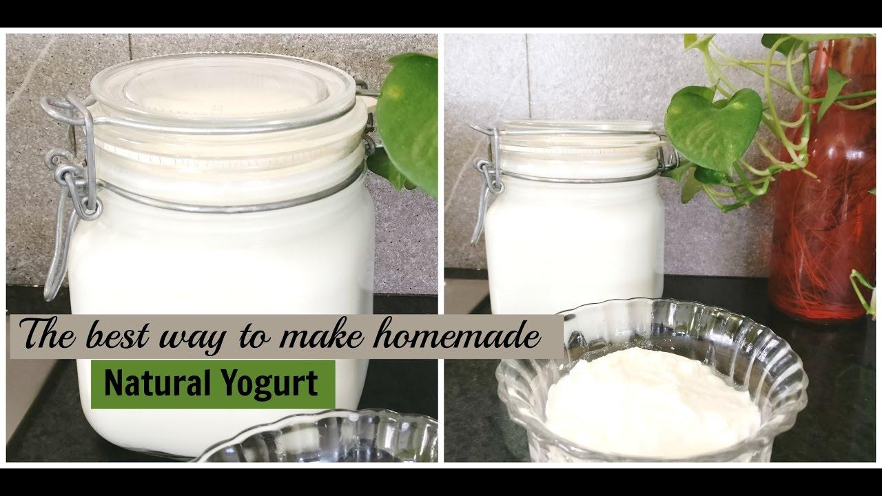 How to make homemade natural fermented yogurt | Probiotic