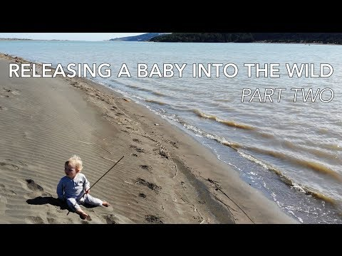 RELEASING A BABY INTO THE WILD -  PART TWO