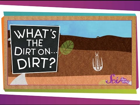 What's the Dirt on ... Dirt?