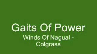 Gaits Of Power - Michael Colgrass