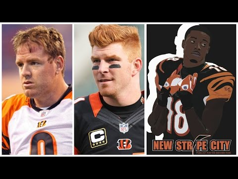 Is Andy Dalton Better Than Carson Palmer Was For The Cincinnati Bengals?