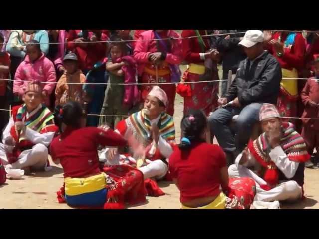 preeti culture show (sunuwar dance) | Mukhiya | Mukhiyaa | Koinch | Kirat | koits |