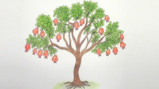 How to Draw Pomegranate Tree Step by step ||very easy||