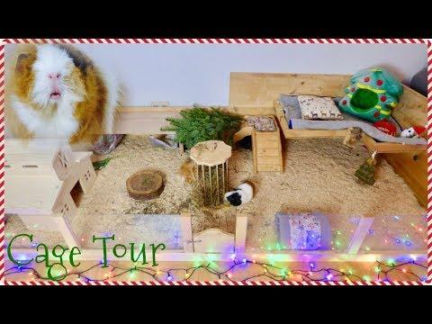 DIY Guinea Pig Cage Tour | Pigmas 2017