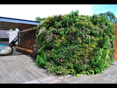 Private Roof Terrace Greenwall Landscape Design Project Of The