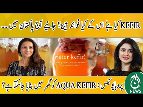 What is KEFIR And What Are Its Benefits? Probiotics: Can AQUA KEFIR Be Made At Home?   Aaj Pakistan