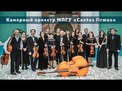 "Онлайн концерт камерного оркестра ""Cantus Firmus"" в главном корпусе МПГУ"