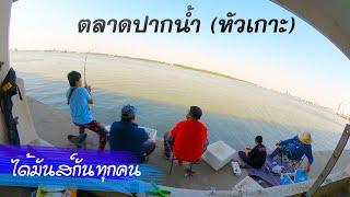 มาแล้วจะติดใจ ตกปลาที่ตลาดปากน้ำ (ตลาดหัวเกาะ) คุ้มสุดๆ วันเสาร์ รอผมรอคอย 555
