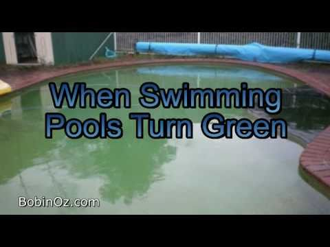 My Green Swimming Pool A Quick Fix Youtube