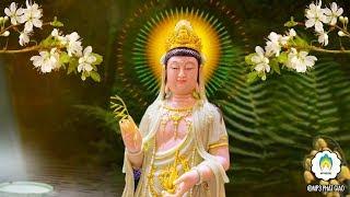 Ở Trong Nhà Thường Mở Kinh Này Phật Bà Quan Âm phù hộ Sức Khỏe Tiêu Tai Giải Nạn Rất Linh Nghiệm