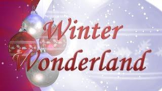 Winter Wonderland   Felix Bernard   Instrumental Cover