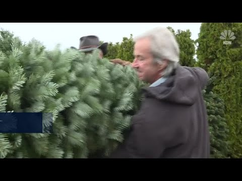 Sylvia Chacon - Christmas Tree Shortage Could Mean Trees Will Cost More Green
