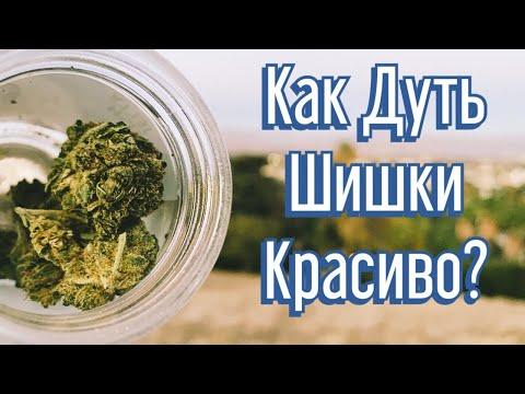 Курю ШИШКИ на
