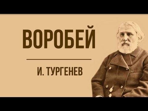 «Воробей» И. Тургенев. Анализ стихотворения в прозе