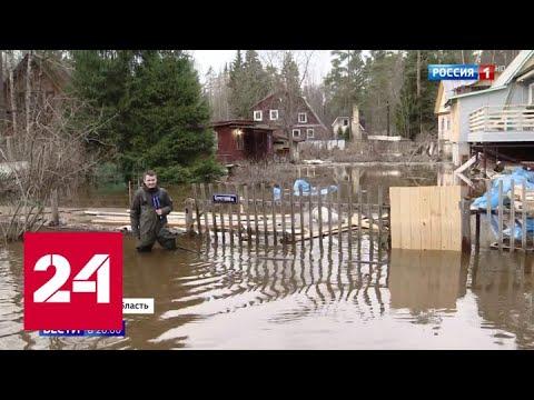 Паводок пришел в Ленобласть на два месяца раньше срока - Россия 24