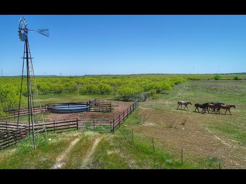 320 Acre Texas Cattle And Hunting Ranch For Sale In Hardeman County- $499,500