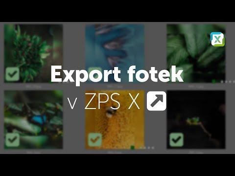 ZPSX - Jak na nastavení exportu