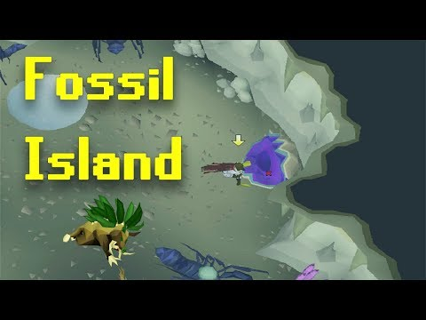 Road To All Pets | New Herbiboar Pet! | Fossil Island Underwater Thieving | Tons Of New Content