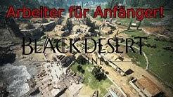 Posten und Arbeiter für Beginner - Black Desert Online [Guide/2019]