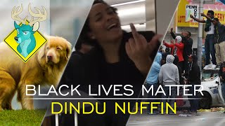 TL;DR - Black Lives Matter Dindu Nuffin