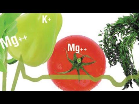 Витамин В5 (пантотеновая кислота) - свойства, суточная