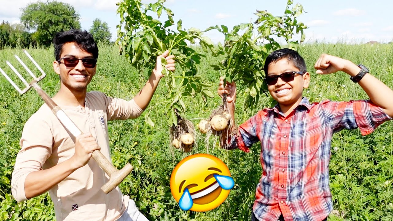 ROMBA PERUMAYA IRUKU - கொத்தோட புடிங்கிட்டோம்!! 😂 | VelBros Tamil