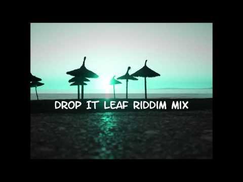 Drop leaf Riddim Mix 2013