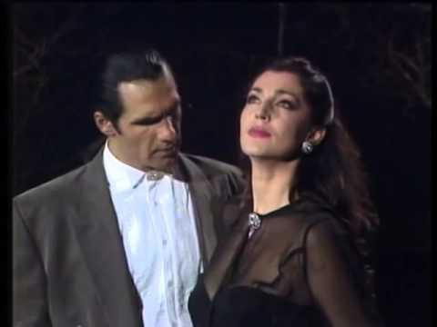 Jadranka Jovanovic & Bojan Milanovic - Ti si mi u krvi