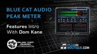 Blue Cat Audio Peak Meter VST Plugin - Features Overview