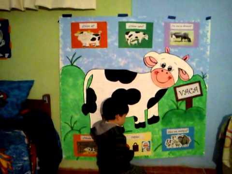 Josue exposicion de la vaca | Doovi