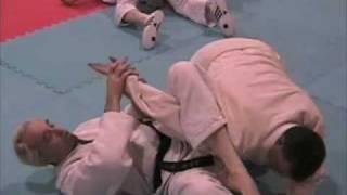 What is Jujitsu?
