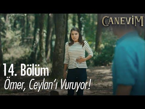 Ömer, Ceylan'ı vuruyor! - Canevim 14. Bölüm