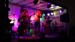 Beethosens live @ Donau in Flammen (Ottensheim 14 Aug 2015)