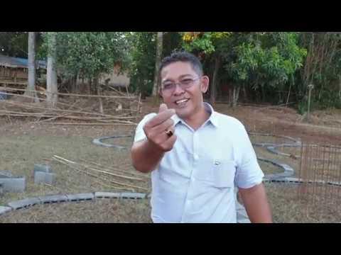 // Perkumpulan Petani Lele Nusantara // bangun 1000 kolam lele