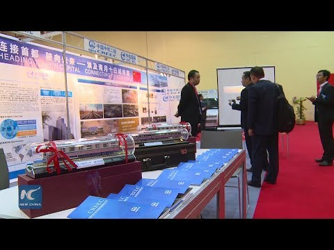 Egypt launches largest trade fair for Chinese investors