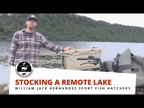 Stocking A Remote Lake In Southcentral Alaska