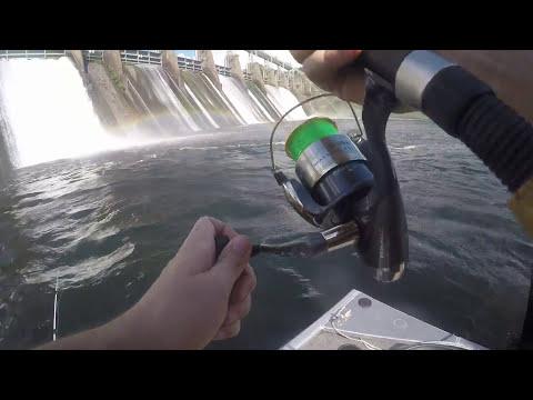 Catfishing Beside Lock 17 In Alabama