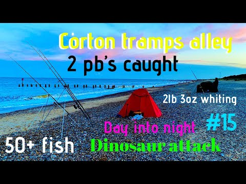 Sea Fishing Uk Beach Corton Tramps Alley 2 Pb's Loads Of Fish Evening Night